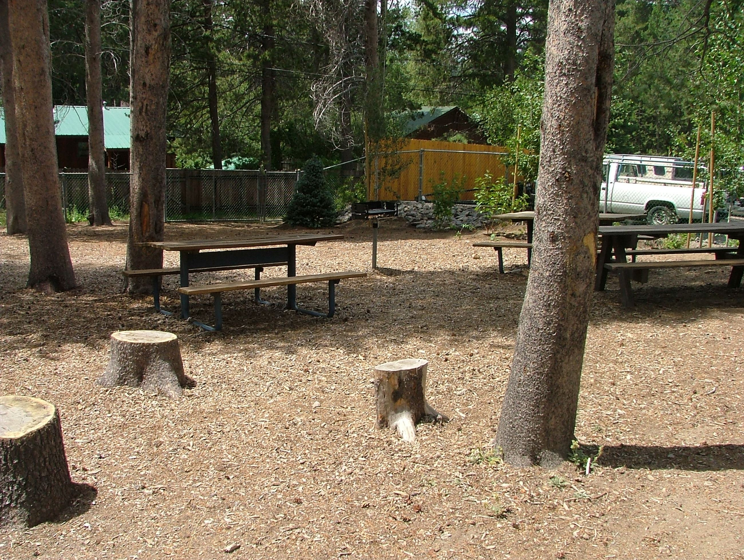 Picnic Area at Bill Rose Park