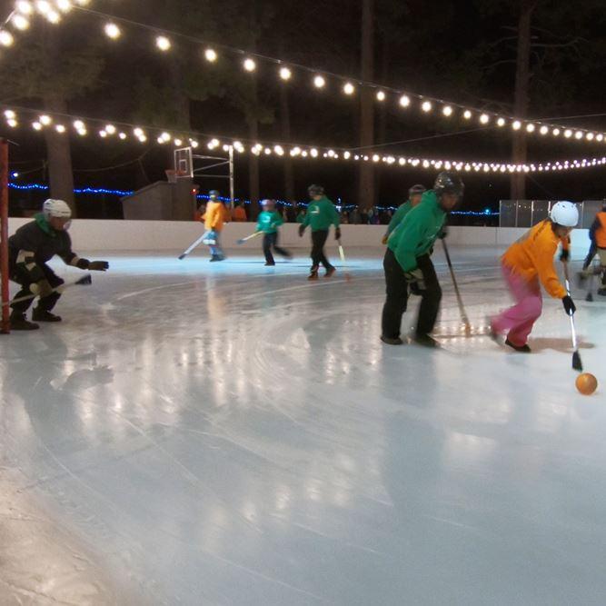 Winter Sports Leagues