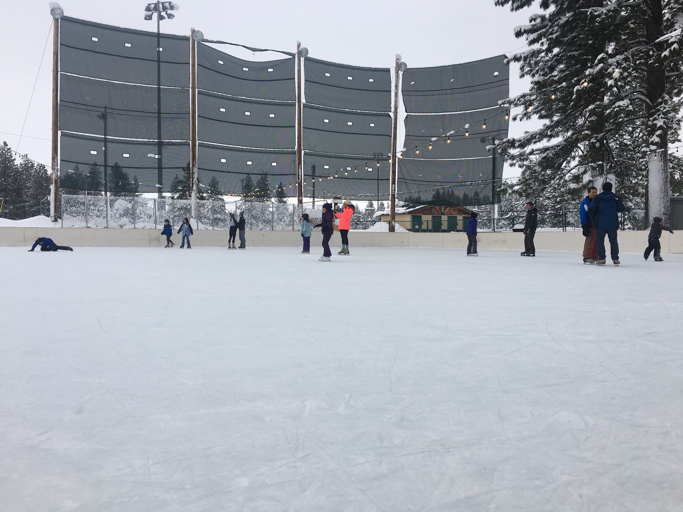 Rink Overview